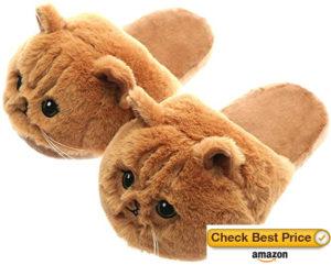 Best Cat Slippers