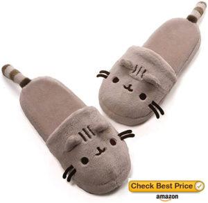 slippers cat