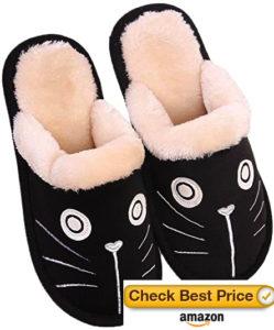 cat dog slippers